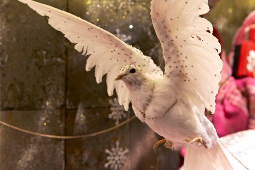 One of Prop Studios' two turtle doves, adorned with crystals by Prop Studios as part of Liberty Imaginarium's 12 Days Of Christmas window scheme