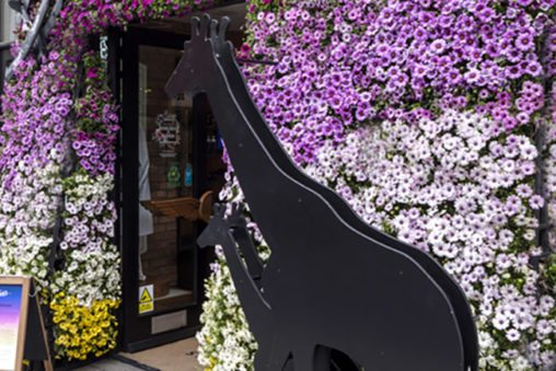 Exterior shot of Kiehl's entrance, designed by Prop Studios as part of Chelsea In Bloom