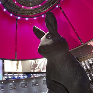 Prop Studios' instore sculpture of a bunny, exclusively for Ann Summers, was nominated for the prestigious VM & Display Awards