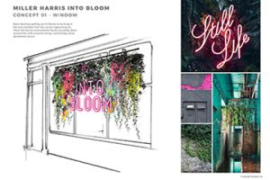 Window concept for Miller Harris store, with examples of signage and foliage