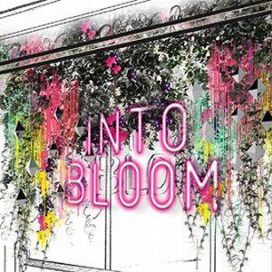 Prop Studios' initial design concept for the Miller Harris In Bloom window display